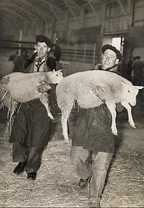 Agneaux Charmois Hte Vienne Paris Exposition Photo 1950