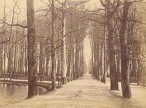 Den Haag Wood Park Canal Netherlands old Photo 1890