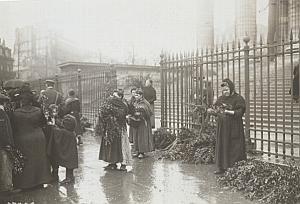 Paris Marchandes Buis Jour des Rameaux Old Photo 1914
