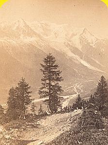 Alpes Mont Blanc Panorama La Flegere Old CDV Photo 1869