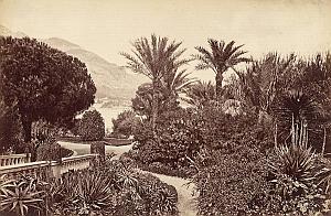 French Riviera Monte Carlo Garden Panorama old Jean Gilletta Photo 1880'