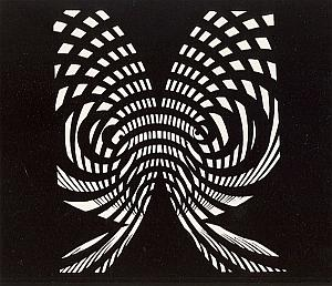 Psychedelic Unusual Artistic Study Photogram 1970'