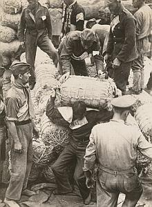 WWII World War Japan Prisoners Propaganda Photo 1942