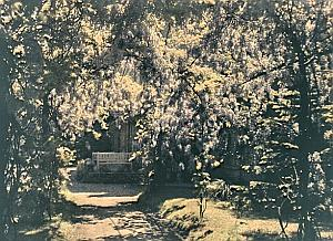 France Saint Saulve Castle Garden Autochrome 1925