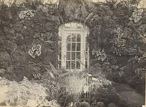 Orchid Fern Anchorage Greenhouse door USA Photo 1925