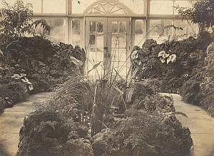 Anchorage Greenhouse Botanical USA Photo 1925