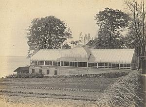 Anchorage Orchid Greenhouse Garden USA Photo 1925