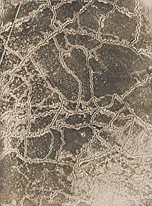 France Trench de la Save WWI Military Aerial Photo 1917