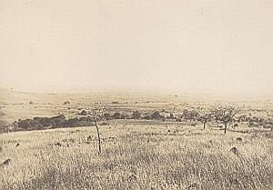 Ankatrafotsy Bara Madagascar Old Diez Photo 1924