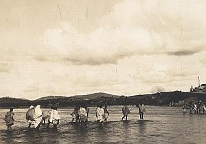 Tongobory Animated Madagascar Old Diez Photo 1924