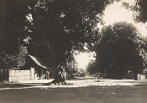 Nossi Be Light Study Madagascar Old Diez Photo 1924