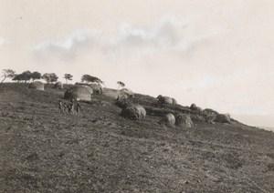Attilio Gatti African Expedition Zulu Village Old Photo 1934