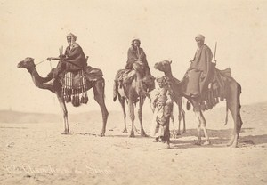 Egypt Sinai Meharistes Camel Corps Cavalry Old Photo 1880