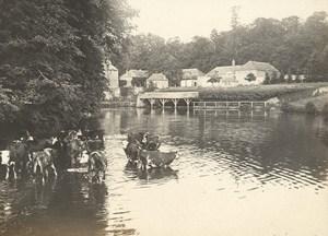 Flers sur Orne Cows Street Scene Snapshot Instantaneous Photo 1900