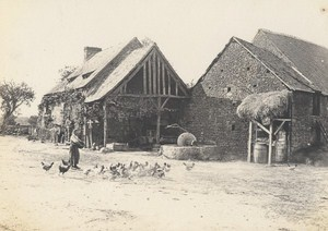Dieppe Poultry Farm Scene Snapshot Instantaneous Photo 1900