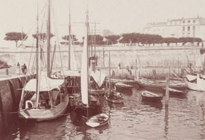 Royan Harbour Street Scene Snapshot Photo Instantaneous 1900