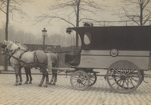 Paris Horse Messageries Nationales Old Delton Photo 1900