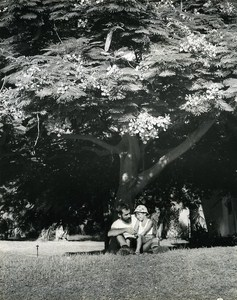 Under the Tree Portrait Amiram the little Israeli Israel Old Photo Maziere 1965
