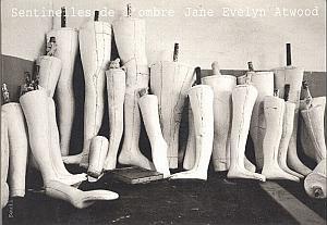 Sentinelles de l'ombre par Atwood, Jane Evelyn