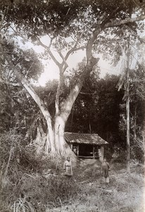 Ban Roi Pagoda Indochina French Occupation Vietnam Old Photo Tong Sing 1895