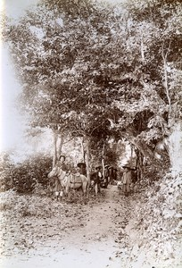 Road Cong Chua to Ban Dan Indochina Vietnam Old Photo Tong Sing 1895