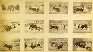 USA Bull Fight Scenes Corrida Old Photo Cabinet FE North 1870