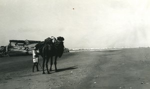 Morocco Mogador Old Portuguese Fort Ruins Camel Old Amateur Photo 1939