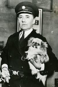 United Kingdom London Dog Show Commandant Mary Allen Pekingese Old Photo 1933