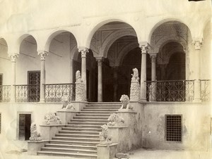 Tunisia Tunis Lions Steps at Bardo Palace Old Photo Garrigues 1890