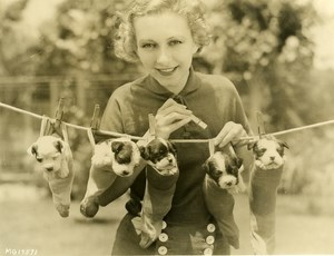 Karen Morley drying her dogs on Laundry Line MGM Photo 1932