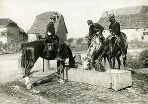 France Grand Military Manoeuvres East Army Horses Old Photo Meurisse 1911