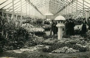 President Doumergue Horticultural Exhibition Greenhouse Paris Old Photo Rol 1931