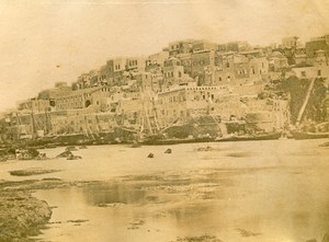 Middle East Israel Jaffa Panorama Old Anonymous Albumen Photo 1880
