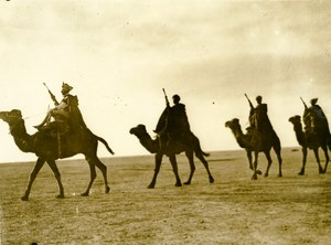 Libya Italian Meharists & Auxiliary Camel Troops Old Photo 1935