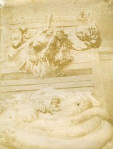 France Reims Slaughterhouse Veterinary Horse Melanoma Old Photo 1900