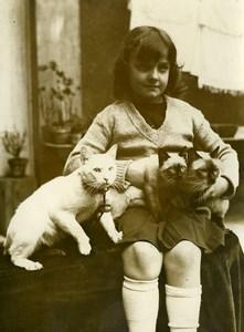 France Paris Siamese Cat Show Exhibition Old Press Photo 1932
