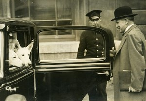 France Paris Marine Minister Francois Pietri and his Dogs Old Press Photo 1936