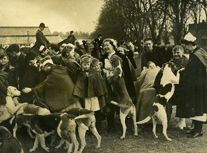 Hampshire Alton Hospital Hounds Visiting Sick Children Old Press Photo 1948