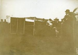 France Paris Greyhound Dog Show at Longchamps Old Photo 1910