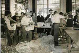 France Neuilly sur Seine Antoine Parmentier Bicentenary Potato Old Photo 1937