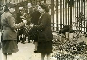 France Paris Religion Palm Sunday Boxwood Seller Old Photo 1945
