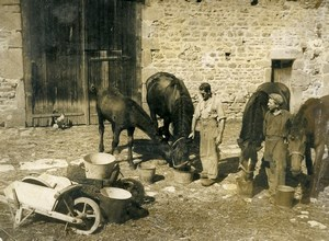 France Creuse Jalesches Drought Farmers & Horses Old Photo 1969