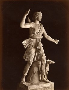 Italy Museum Antiquity Roman Sculpture Diana Hunter Cacciatrice Old Photo 1880