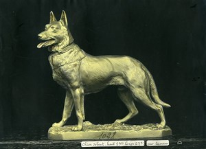 France Paris Art Deco Cadran Workshop Samson Dog Standing Old Photo 1930