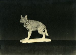 France Paris Art Deco Cadran Workshop Dog Bronze Old Photo 1930