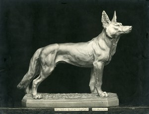 France Paris Art Deco Cadran Workshop Bartelletti Standing Dog Old Photo 1930