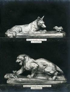 France Paris Art Deco Cadran Workshop Bartelletti Dog & Tiger Old Photo 1930