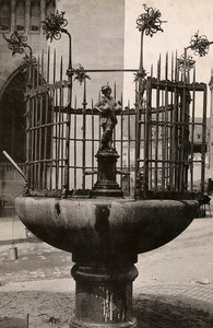 Germany Nurnberg Gänsemännchenbrunnen Fountain Old Cabinet Photo Rommler 1890