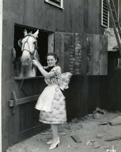 USA Cleveland Firestone Exhibit Great Lakes Exposition Horse Old Photo 1937