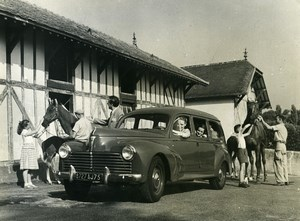 France Automobile Family Limousine 203 Peugeot Horses Stables Old Photo 1956